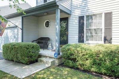 Canal Winchester Single Family Home Contingent Finance And Inspect: 5339 Rifle Drive