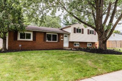 Westerville Single Family Home For Sale: 3492 Manila Drive