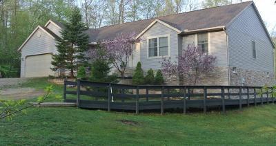 Newark Single Family Home For Sale: 11960 Flint Ridge Road SE