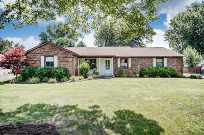 Columbus Single Family Home For Sale: 1196 Youngland Drive