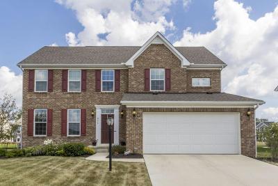 Delaware Single Family Home For Sale: 975 Farmington Lane