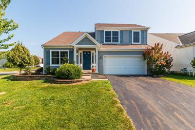 Single Family Home For Sale: 744 Cedar Run Drive