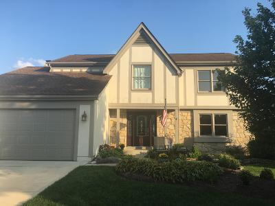 Dublin Single Family Home For Sale: 6689 Fallen Timbers Drive