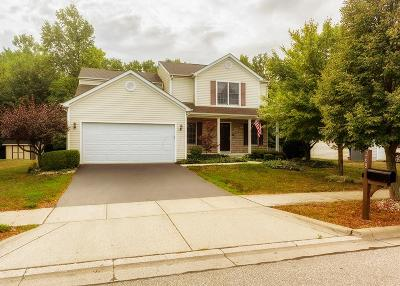 Delaware Single Family Home For Sale: 268 Rockmill Street