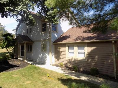 Westerville Condo For Sale: 1293 Spring Brook Court