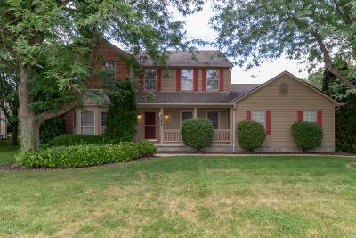 Dublin Single Family Home For Sale: 5686 Wilcox Road
