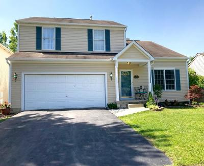 Canal Winchester Single Family Home Contingent Finance And Inspect: 7445 Tyler Henry Court