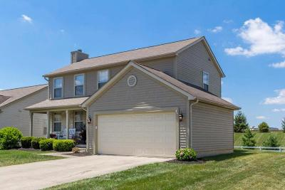 Sunbury Single Family Home Contingent Finance And Inspect: 453 Clifden Court