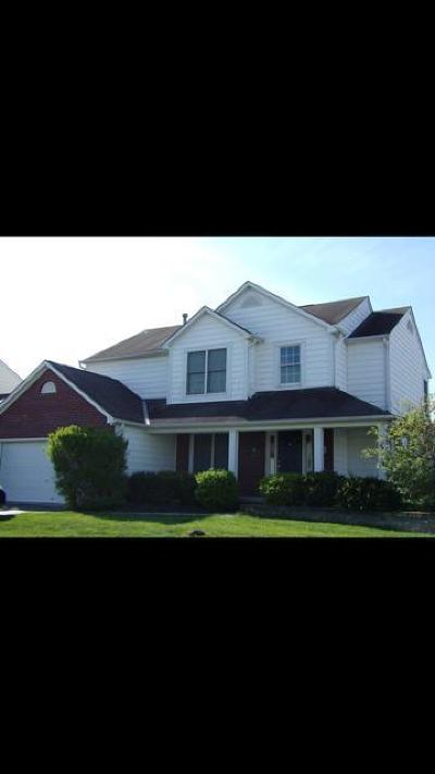 New Albany OH Single Family Home For Sale: $360,000