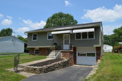 Columbus Single Family Home Contingent Finance And Inspect: 5034 Cryodon Boulevard N