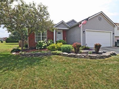 Dublin Single Family Home For Sale: 6592 Delburn Court