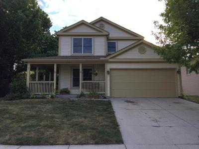 Single Family Home For Sale: 236 Rock Creek Drive