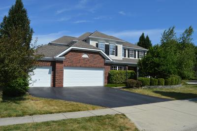 Dublin Single Family Home Contingent Finance And Inspect: 7448 Wisdom Lane