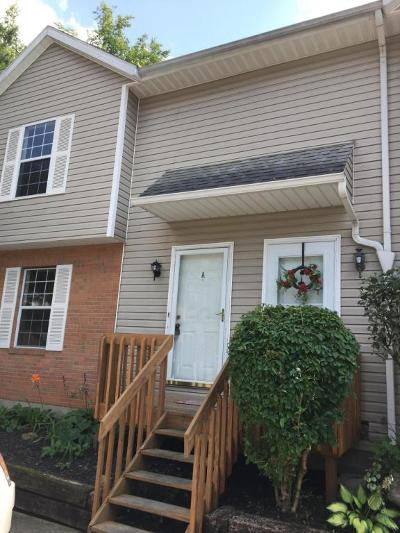 Newark Condo Contingent Finance And Inspect: 1239 Pineview Trail #A
