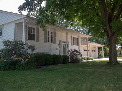 Marysville Single Family Home For Sale: 316 Buerger Street