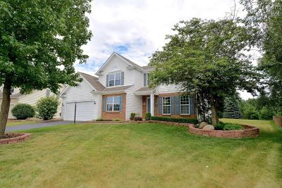 Westerville Single Family Home For Sale: 6617 Hermitage Drive
