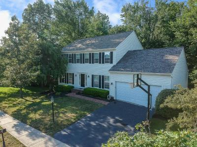Powell Single Family Home For Sale: 390 Andover Drive