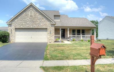 Single Family Home For Sale: 4861 Founders Drive