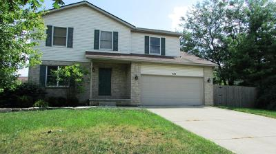 Grove City Single Family Home For Sale: 4133 Southwest Boulevard