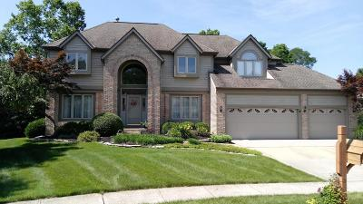Reynoldsburg Single Family Home For Sale: 1855 Drugan Court