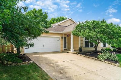 Columbus Single Family Home For Sale: 3705 Seattle Slew Drive