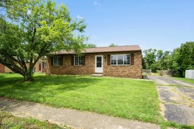 Groveport Single Family Home For Sale: 3721 Big Walnut Drive