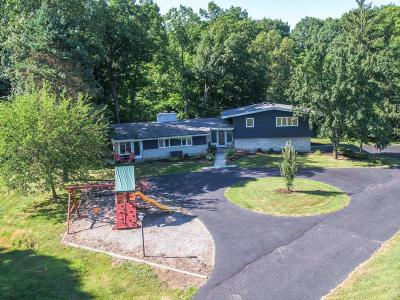 Delaware OH Single Family Home For Sale: $410,000