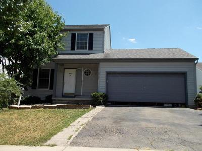 Grove City Single Family Home For Sale: 4533 Dungannon Drive
