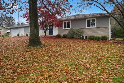 Upper Arlington Single Family Home For Sale: 2755 Donna Drive