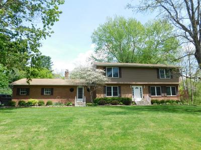 Licking County Single Family Home For Sale: 71 Mill Race Road