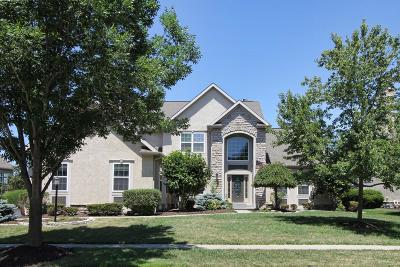 Dublin Single Family Home For Sale: 6580 Ballantrae Place