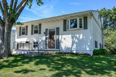 Columbus Single Family Home For Sale: 896 Olympia Drive