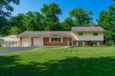 New Albany Single Family Home For Sale: 7240 Morse Road