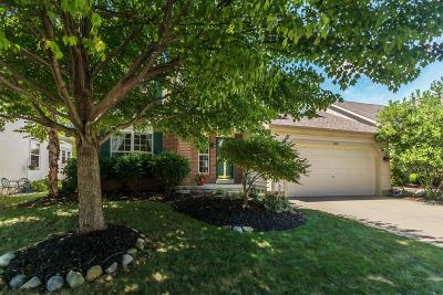 Westerville Single Family Home Contingent Finance And Inspect: 209 Bluestone Court