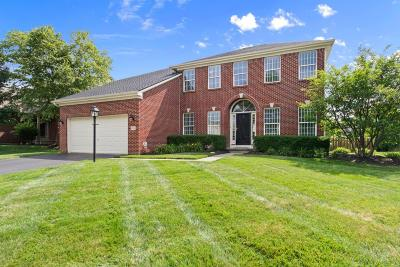 Westerville Single Family Home For Sale: 6303 Falcon Chase Drive