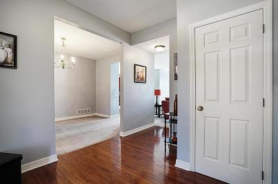 Pickerington Single Family Home For Sale: 366 Linden Circle