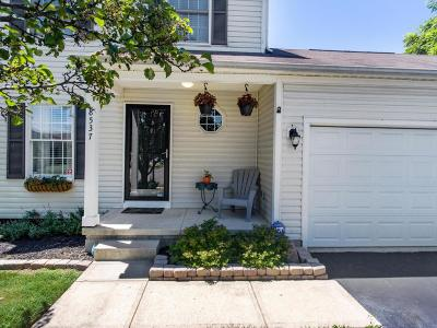 Lewis Center Single Family Home For Sale: 8537 Olenbrook Drive