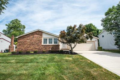 Columbus Single Family Home For Sale: 448 Peale Court