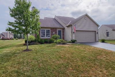 Canal Winchester Single Family Home For Sale: 7880 Edgewater Drive