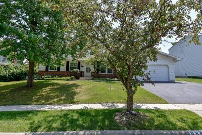 Reynoldsburg Single Family Home Contingent Finance And Inspect: 6959 Ardelle Drive