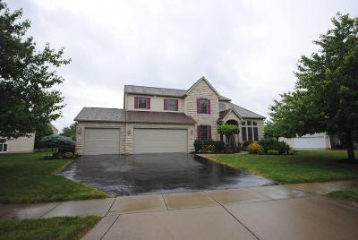 Galena Single Family Home Contingent Finance And Inspect: 5750 Burnett Drive