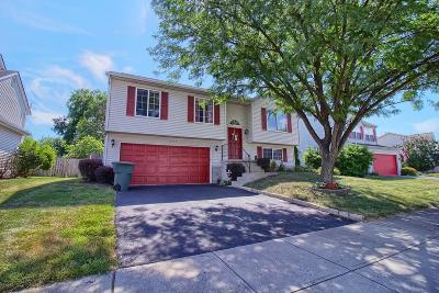Grove City Single Family Home For Sale: 2557 Willowgate Road