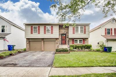 Hilliard Single Family Home Sold: 4960 Hidden View Court