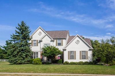 Lewis Center Single Family Home For Sale: 7701 Holderman Street