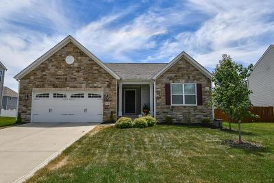 Reynoldsburg Single Family Home For Sale: 8788 Patterson Loop