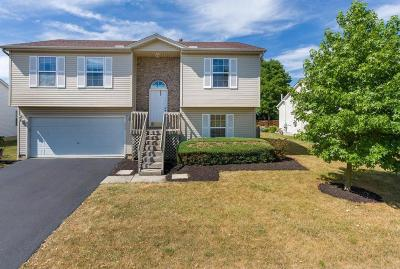 Single Family Home For Sale: 1027 Brittany Drive