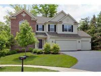 Columbus Single Family Home For Sale: 1385 Fisher Run Court