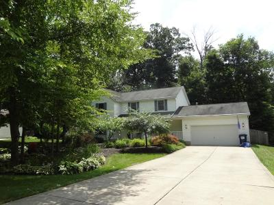 Pataskala Single Family Home Contingent Finance And Inspect: 205 Challedon Circle SW