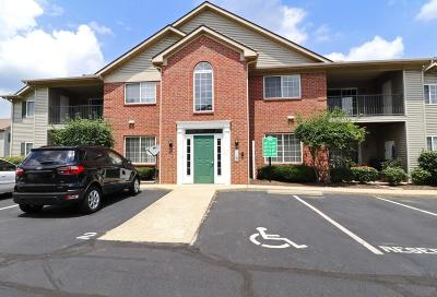 Lewis Center Condo Sold: 649 Spring Valley Drive