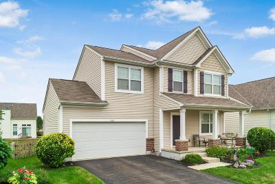Single Family Home For Sale: 645 Redwood Valley Drive